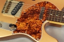 Ron_kirn_thinline_cons_pickguard_1