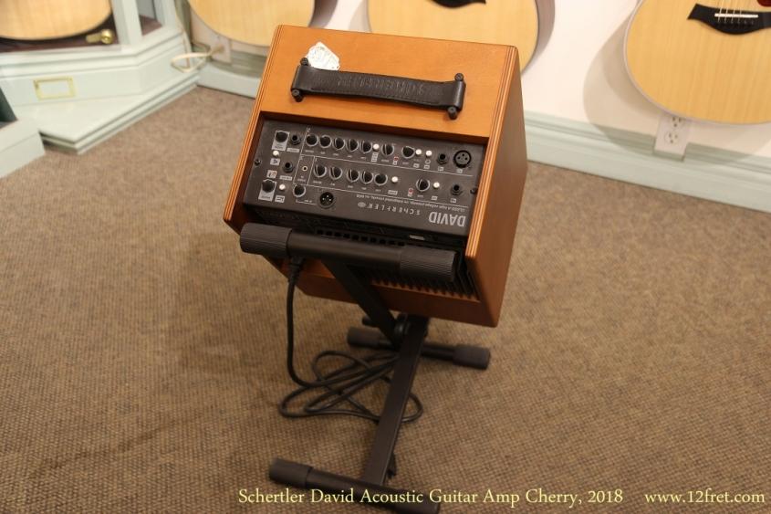 Schertler David Acoustic Guitar Amp Cherry, 2018   Rear View