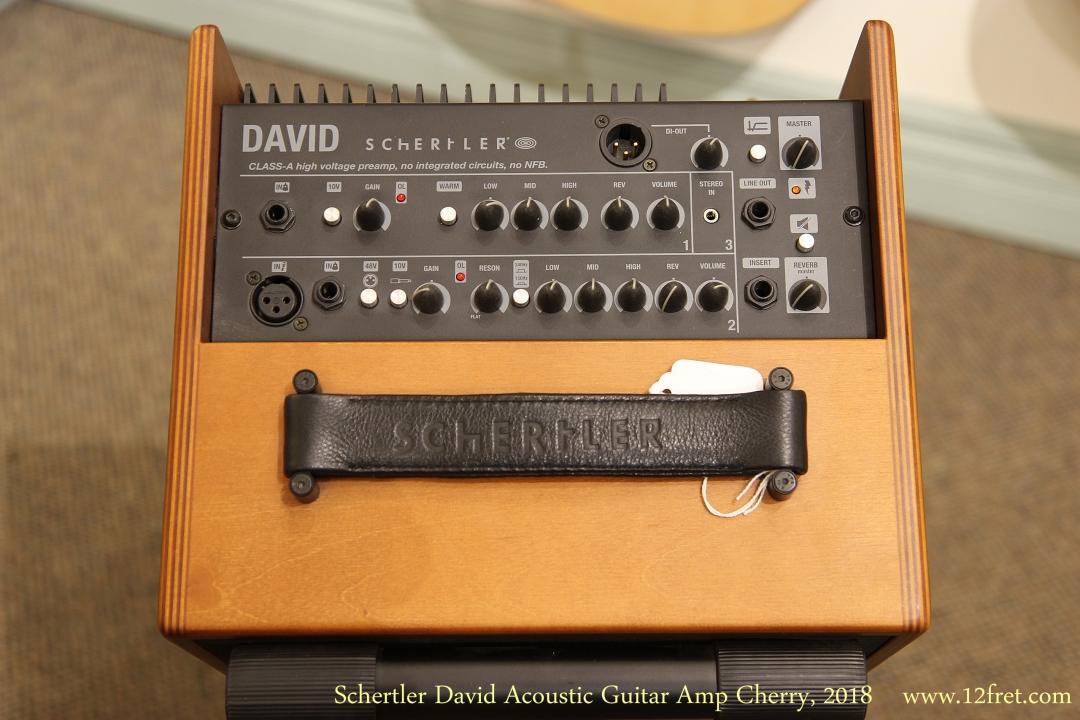schertler david acoustic guitar amp cherry 2018. Black Bedroom Furniture Sets. Home Design Ideas