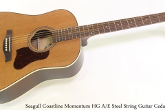 Seagull Coastline Momentum HG A/E Steel String Guitar Cedar Full Front View