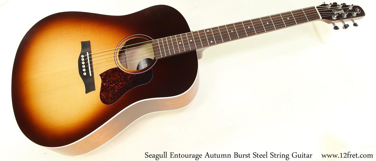Seagull Entourage Autumn Burst Steel String Guitar Full Front View