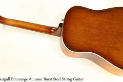 Seagull Entourage Autumn Burst Steel String Guitar Full Rear View