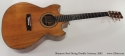 Shannon Double Cutaway Acoustic 2002 full front view