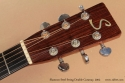 Shannon Double Cutaway Acoustic 2002 head front