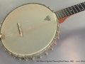 S.S. Stewart Special Thoroughbred Banjo 1895 top