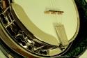 Stelling Bellflower 5-String Banjo Armrest and Tailpiece