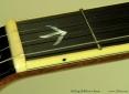 Stelling Bellflower 5-String Banjo  Binding