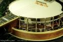 Stelling Bellflower 5-String Banjo Top Detail