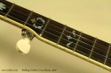 Stelling Golden Cross Banjo 2007 5th string peg