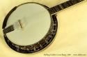 stelling-golden-cross-banjo-2007-cons-top-1