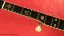 Stelling Red Fox Banjo fingerboard inlay 1