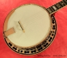 Stelling Red Fox Banjo top 1