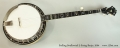 Stelling Swallowtail 5-String Banjo, 2004 Full Front View