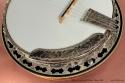Stelling Swallowtail Deluxe Banjo 2005 armrest