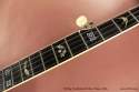 Stelling Swallowtail Deluxe Banjo 2005 fingerboard inlay 1