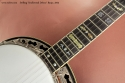 Stelling Swallowtail Deluxe Banjo 2005  fingerboard inlay 2