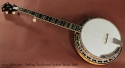 Stelling Swallowtail Deluxe Banjo 2005  full front view