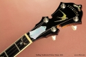 Stelling Swallowtail Deluxe Banjo 2005  head front view