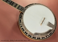 Stelling Swallowtail Deluxe Banjo 2005  top
