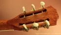 taylor-12fret-mahogany-head-rear-1