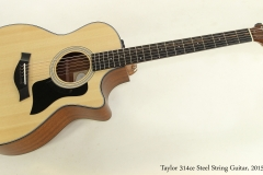 Taylor 314ce Steel String Guitar, 2015  Full Front View