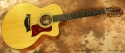 Taylor 355ce 12-string Acoustic 2002 full front view