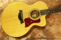 Taylor 355ce 12-string Acoustic 2002 top