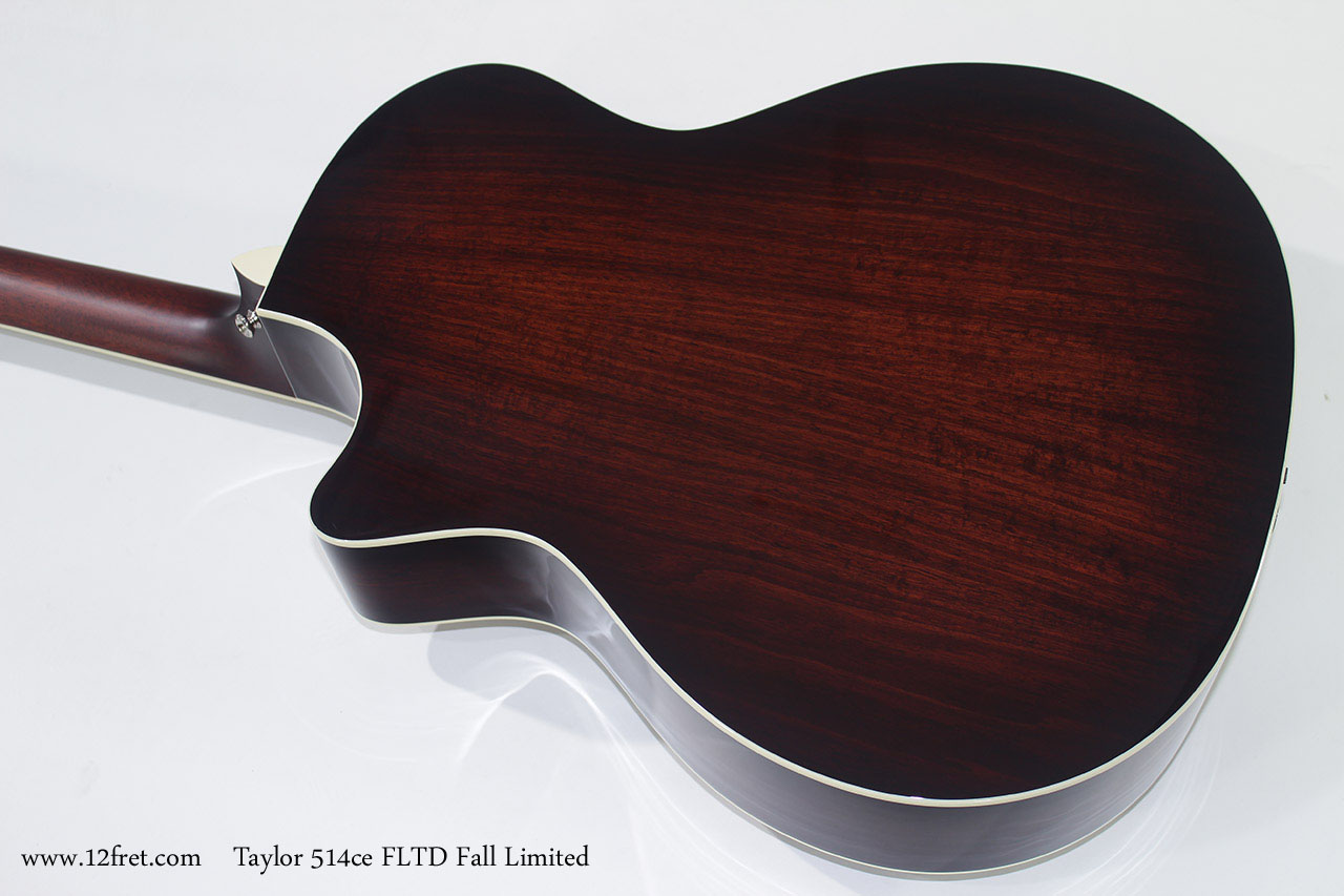 Taylor 514ce FLTD Fall Limited back