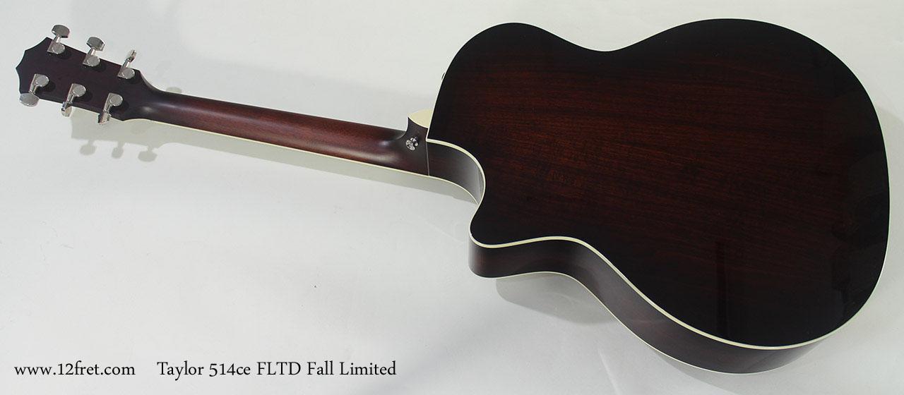 Taylor 514ce FLTD Fall Limited full rear view