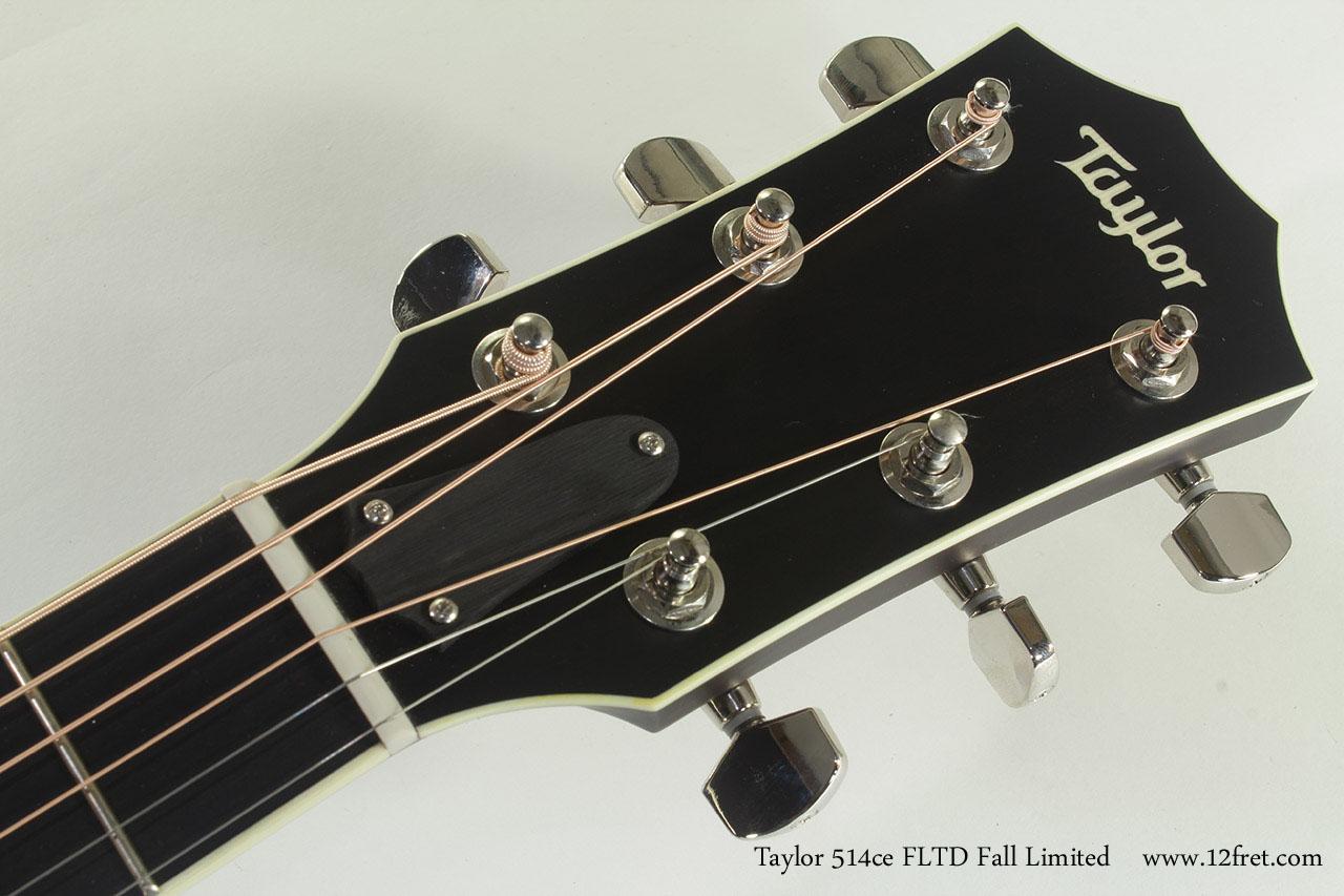 Taylor 514ce FLTD Fall Limited head front