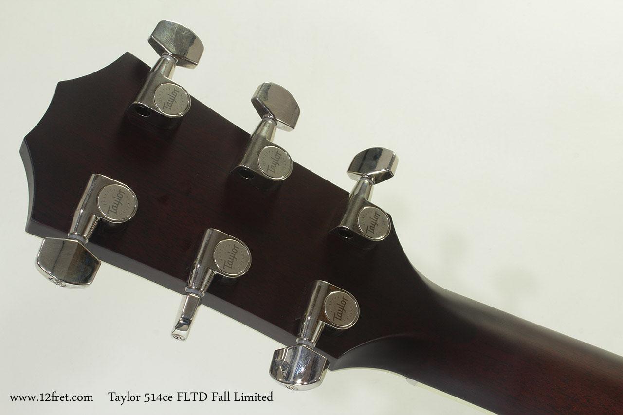 Taylor 514ce FLTD Fall Limited head rear