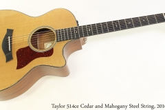 Taylor 514ce Cedar and Mahogany Steel String, 2016 Full Front View