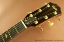 Taylor 514e FLTD Fall Limited head front