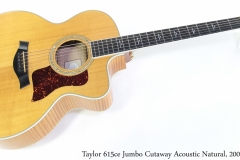 Taylor 615ce Jumbo Cutaway Acoustic Natural, 2000 Full Front View