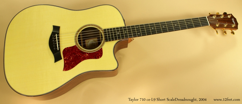 Taylor 710 ce-L9 Short Scale Dreadnought, 2004 full front view