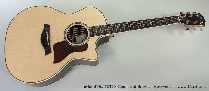 taylor-814ce-braz-cites-full-front
