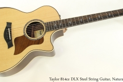 Taylor 814ce DLX Steel String Guitar, Natural Full Front View