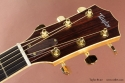 Taylor 814ce head front