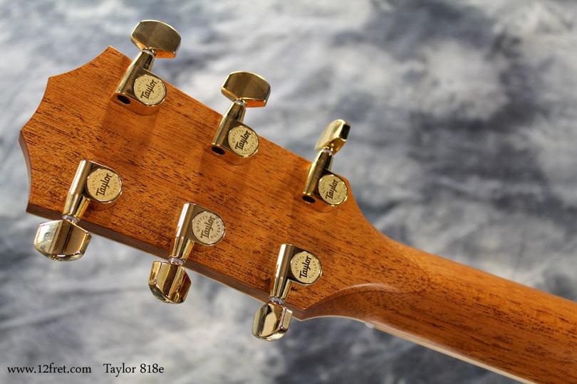 Taylor 818e head rear