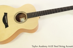 Taylor Academy A12E Steel String Acoustic Full Front View
