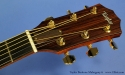 taylor-baritone-6-mahogany-ss-head-front-1