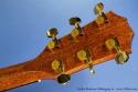 taylor-baritone-6-mahogany-ss-head-rear-1