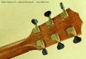 taylor custom ga amazon rosewood head rear
