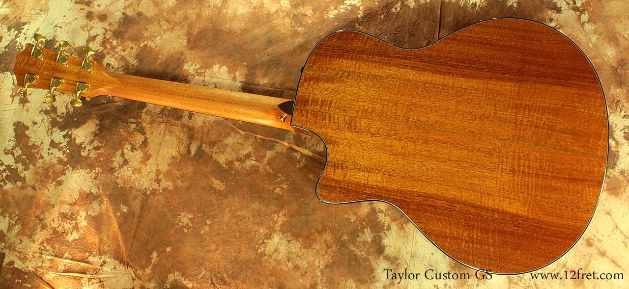 Taylor-custom-gs-full-rear-1