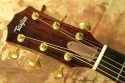 Taylor-custom-gs-head-front-1