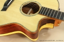 Taylor GS Custom Fall LTD 2008 cutaway