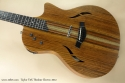 Taylor Tx5  Thinline Electric 2012 top