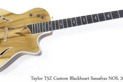 Taylor T5Z Custom Blackheart Sassafras NOS, 2017 Full Front View