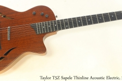 Taylor T5Z Sapele Thinline Acoustic Electric, 2016 Full Front View