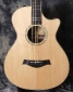 Taylor 12 Fret Steel String Acoustic Guitar Top View